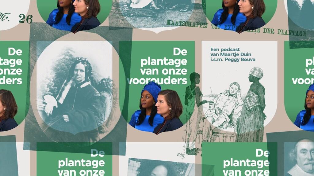 'De plantage van onze voorouders'