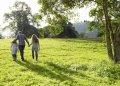 Meer groen en een groter huis: we willen anders wonen door corona